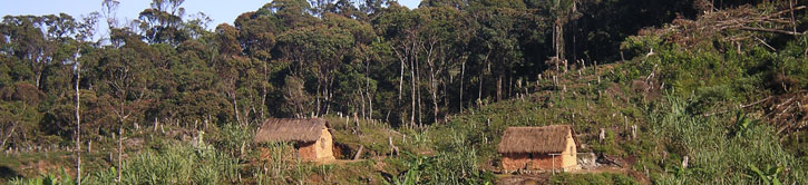 village with deforestation around