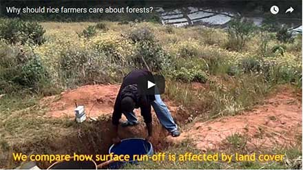 Youtube still: Why should rice farmers care about forests?