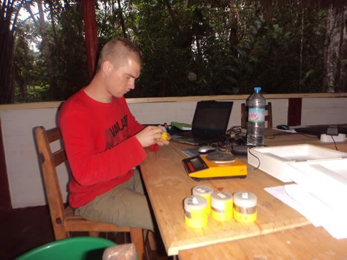 weighing soil samples